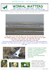 Wirral Matters, Winter 2011