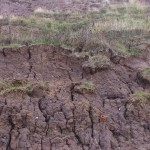 Landslip at Thurstaston beach, Wirral