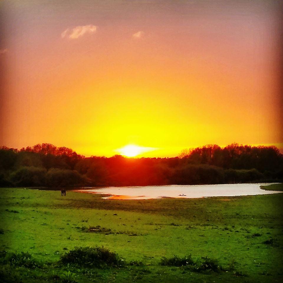 Sunset over 'The Scrape'