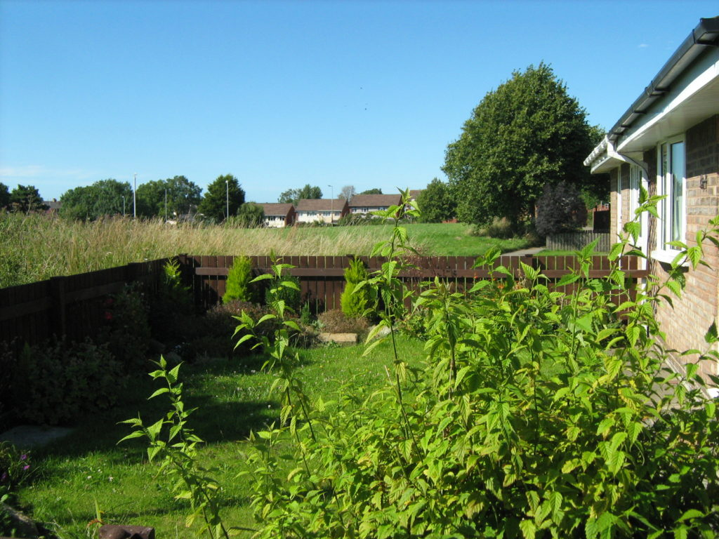 View of proposed Saughall Massie Fire Station from sheltered housing garden