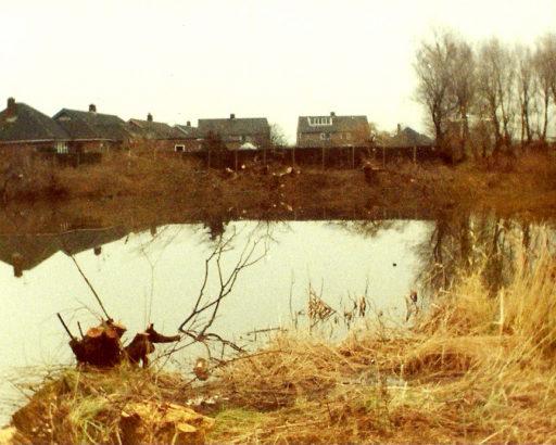 'Darkies Dip' pond