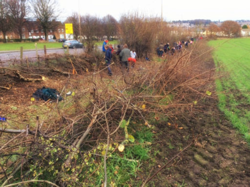 Tree-planting-and-hedge-laying-at-Woodchurch
