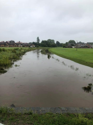 Arrowe Brook - Moreton 12th June 2019